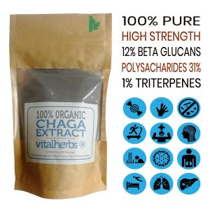 Organic Chaga Extract Powder