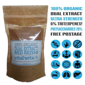 Reishi Dual Extract Powder