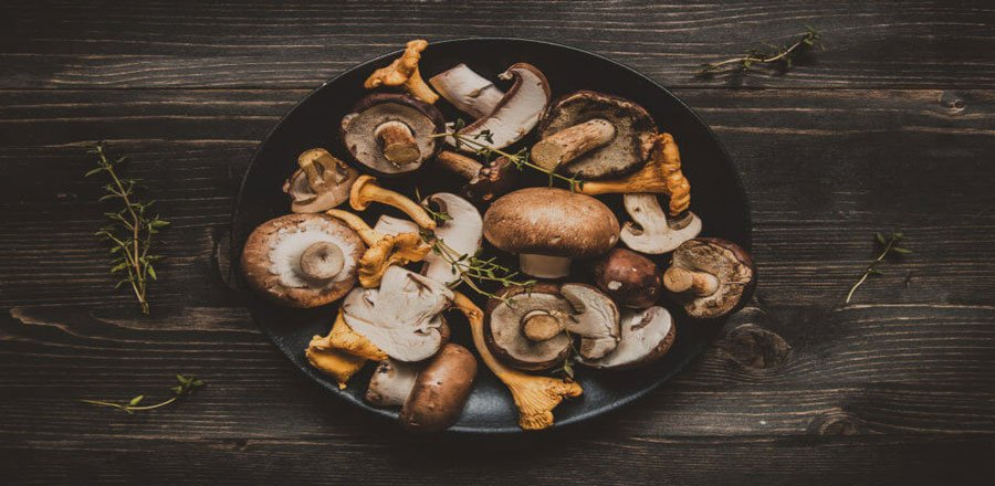 mushrooms improve cognitive function