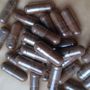 red reishi extract capsules