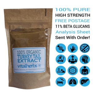 Organic Turkey Tail Extract