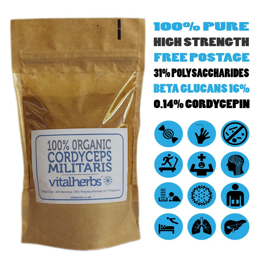 organic cordyceps extract powder